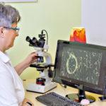 Mit der Dunkelfeldmikroskopie zur Dunkelfelddiagnose,Vitalblutanalyse